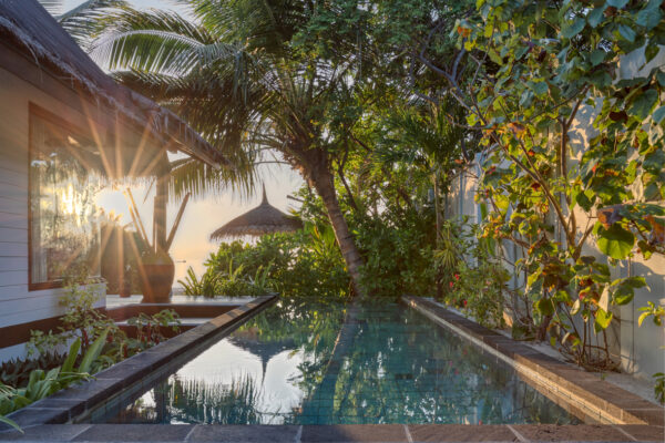 Earth Pool Villa 409