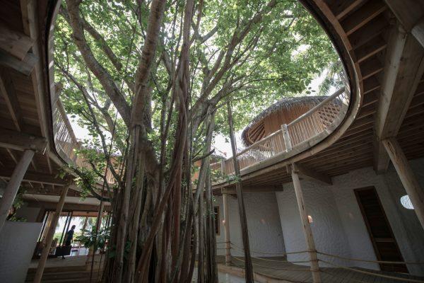 insel-seite-soneva-fushi-villa-15-03-Maledivenexperte