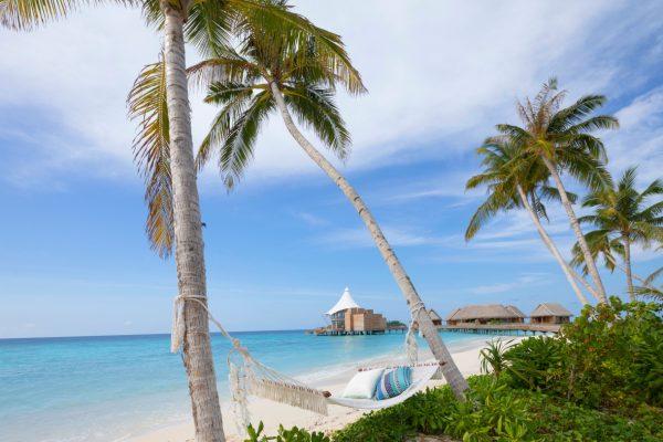 insel-seite-the-nautilus-unterkunft-beach-house-with-pool-maledivenexperte-04