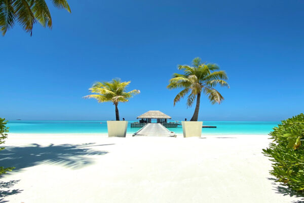 malediven-experte-niyama-private-islands-maldives-blog-surfen-08